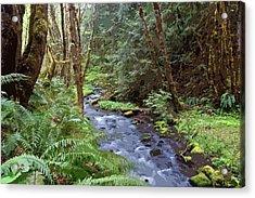 Acrylic Print featuring the photograph Wilson Creek #22 Enhanced by Ben Upham III