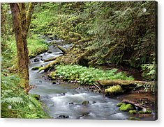 Acrylic Print featuring the photograph Wilson Creek #24 by Ben Upham III