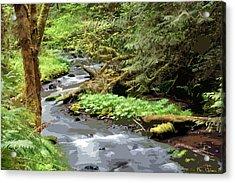 Acrylic Print featuring the photograph Wilson Creek #24 Enhanced by Ben Upham III