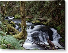 Acrylic Print featuring the photograph Wilson Creek #25 by Ben Upham III