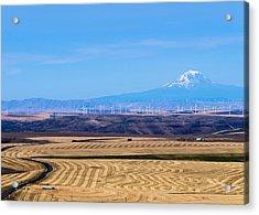Wind And Wheat Acrylic Print