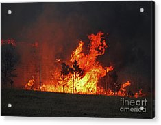 Wildfire Flames Acrylic Print