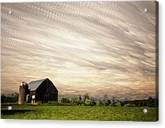 Wind Farm Acrylic Print by Matt Molloy