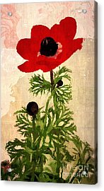 Wind Flower Acrylic Print by Alexis Rotella