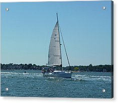 Wind In The Sails Acrylic Print by Margie Avellino