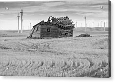 Acrylic Print featuring the photograph Wind On The Plains by Fran Riley