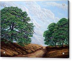 Windblown Clouds Acrylic Print by Frank Wilson