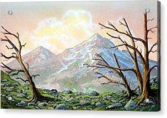 Windblown Acrylic Print by Frank Wilson