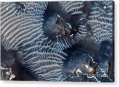 Windblown Sediments. Noctis Labyrinthus. Mars Acrylic Print by Celestial Images