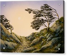 Windblown Warriors Acrylic Print by Frank Wilson