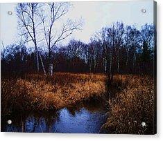 Winding Creek 2 Acrylic Print by Anna Villarreal Garbis