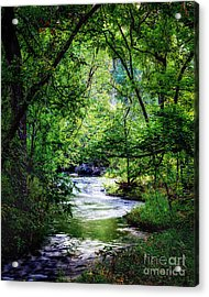 Winding Creek At Chickasaw National Recreation Area In Vertical Acrylic Print by Tamyra Ayles