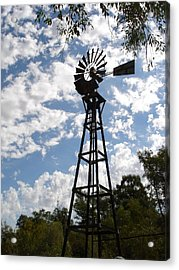 Acrylic Print featuring the photograph Windmill At The Arboretum by Marilyn Barton