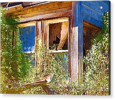 Acrylic Print featuring the photograph Window 2 by Susan Kinney