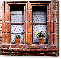 Window And Pots II Acrylic Print by Carl Jackson
