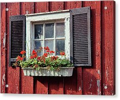 Window Box Acrylic Print by Dressage Design