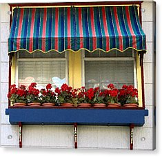 Window Box Geraniums Acrylic Print by Colleen Kammerer