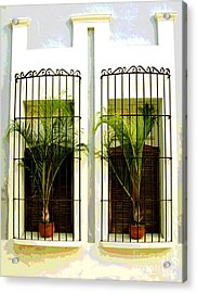 Window Ferns By Darian Day Acrylic Print by Mexicolors Art Photography