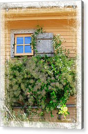 Acrylic Print featuring the photograph Window Floral In Plymouth by Joan  Minchak