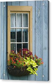 Window Flower Basket Acrylic Print