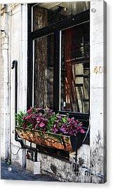 Window Flowers Acrylic Print by John Rizzuto