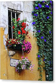 Window Garden In Arles France Acrylic Print