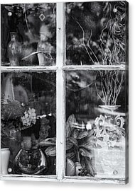 Window In Black And White Acrylic Print by Tom Singleton
