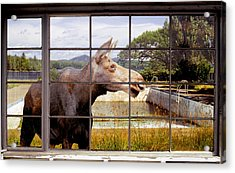 Acrylic Print featuring the photograph Window - Moosehead Lake by Peter J Sucy
