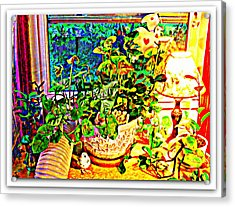 Window Plant Acrylic Print