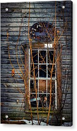 Acrylic Print featuring the photograph Window Shopping by Kendall McKernon
