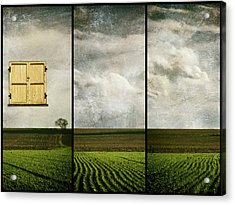 Window To Farmland Triptych Acrylic Print