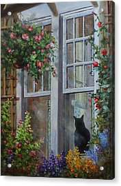 Window Watcher Acrylic Print