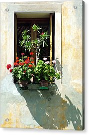 Acrylic Print featuring the photograph Window With A Tree by Donna Corless