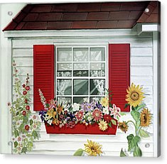 Windowbox With Cat Acrylic Print