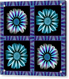Windowpanes Brimming With  Moonburst Stripes Of Flowers - Scene 2 Acrylic Print by Jacqueline Migell