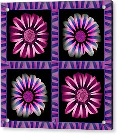 Windowpanes Brimming With  Moonburst Stripes Of Flowers - Scene 3 Acrylic Print by Jacqueline Migell