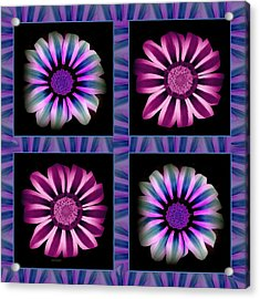 Windowpanes Brimming With  Moonburst Stripes Of Flowers - Scene 5 Acrylic Print by Jacqueline Migell