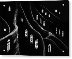 Windows Of The Forest Acrylic Print by Jacqueline Hammer