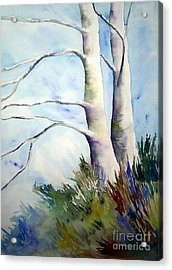 Winds Of Provence Acrylic Print
