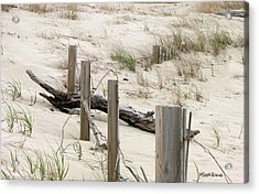 Windswept Beach Fence Cape Cod Massachusetts Acrylic Print