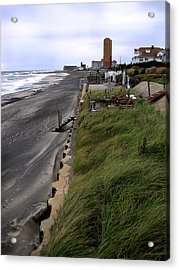 Windswept Acrylic Print by Colleen Kammerer