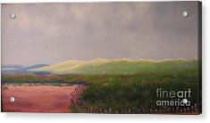 Windswept Dunes Acrylic Print by Laura Roberts
