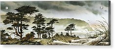 Windswept Shore Acrylic Print by James Williamson