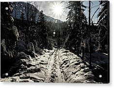 Acrylic Print featuring the photograph Windy Day by Fred Denner