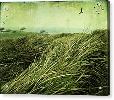 Acrylic Print featuring the digital art Windy Day On The Nut by Margaret Hormann Bfa