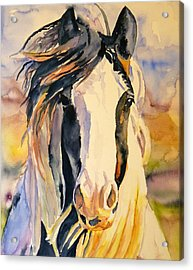 Windy Acrylic Print by P Maure Bausch