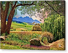 Wine Country Acrylic Print by Maria Coulson