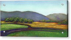 Wine County In Napa Acrylic Print