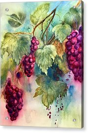 Wine Grapes Acrylic Print