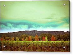 Wine In Time Acrylic Print by Ryan Weddle